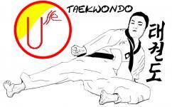 USSE TAEKWONDO